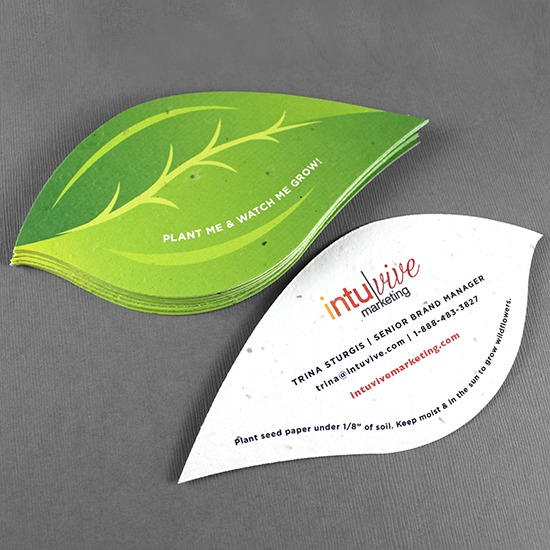 plantable visiting cards leaf shape  pepaa